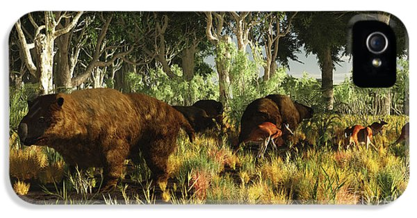 Roaming iPhone 5 Cases - Diprotodon On The Edge Of A Eucalyptus iPhone 5 Case by Arthur Dorety