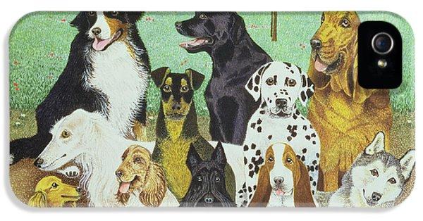 Scottie iPhone 5 Cases - Dog Watch iPhone 5 Case by Pat Scott