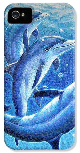 Mosaic iPhone 5 Cases - Dolphin Trio iPhone 5 Case by Mia Tavonatti