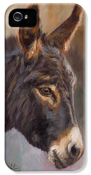 Donkey iPhone 5 Cases - Donkey iPhone 5 Case by David Stribbling