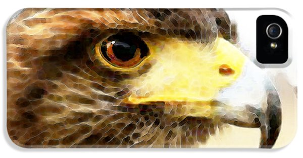 Hawk iPhone 5 Cases - Double Hawk iPhone 5 Case by Sharon Cummings