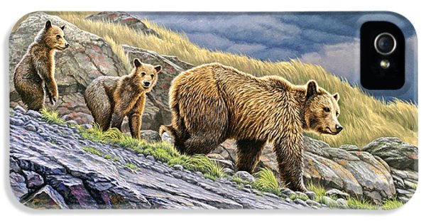 Cubs iPhone 5 Cases - Dunraven Pass Grizzly Family iPhone 5 Case by Paul Krapf