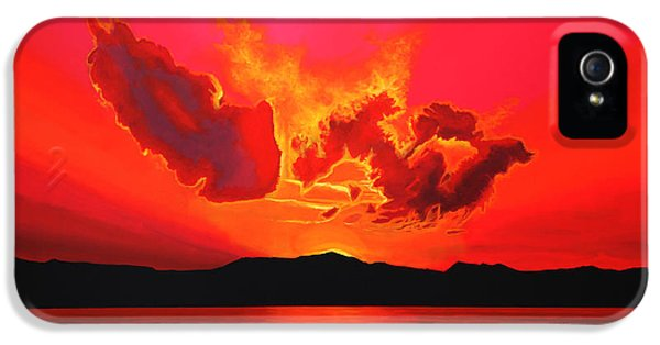 Element iPhone 5 Cases - Earth Sunset iPhone 5 Case by Paul Meijering