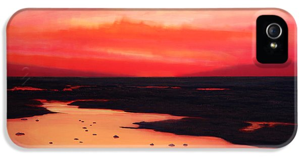 Pink Sunrise iPhone 5 Cases - Earth Swamp iPhone 5 Case by Paul  Meijering
