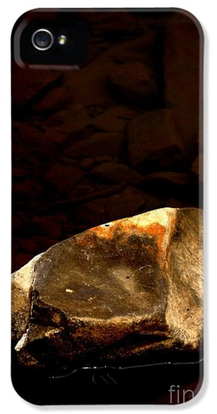 Extremity iPhone 5 Cases - Earth Tones iPhone 5 Case by Marcia Lee Jones