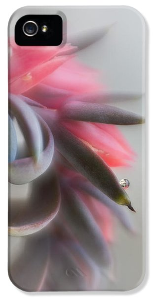 Lensbaby Macro iPhone 5 Cases - Echeveria iPhone 5 Case by David and Carol Kelly
