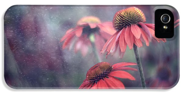 Echinacea iPhone 5 Cases - Echinacea Dream iPhone 5 Case by Magda  Bognar