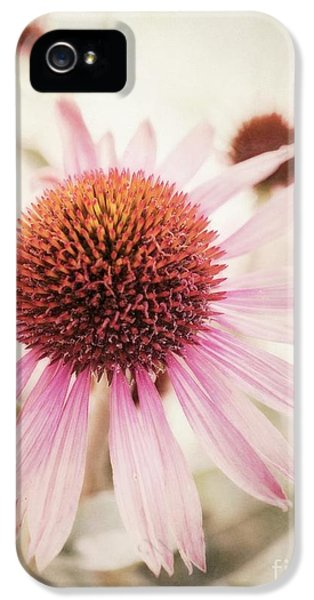 Echinacea iPhone 5 Cases - Echinacea iPhone 5 Case by Priska Wettstein