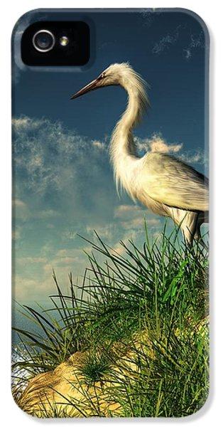 Egret In The Dunes IPhone 5 / 5s Case by Daniel Eskridge