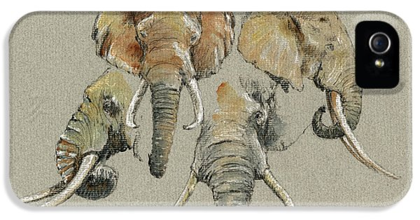 Elephant iPhone 5 Cases - Elephant heads iPhone 5 Case by Juan  Bosco
