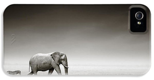 B iPhone 5 Cases - Elephant with zebra iPhone 5 Case by Johan Swanepoel