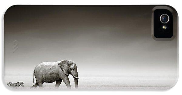 Elephant With Zebra IPhone 5 / 5s Case by Johan Swanepoel