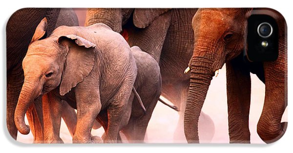 Many iPhone 5 Cases - Elephants stampede iPhone 5 Case by Johan Swanepoel