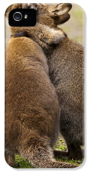 Hug iPhone 5 Cases - Embrace iPhone 5 Case by Mike  Dawson