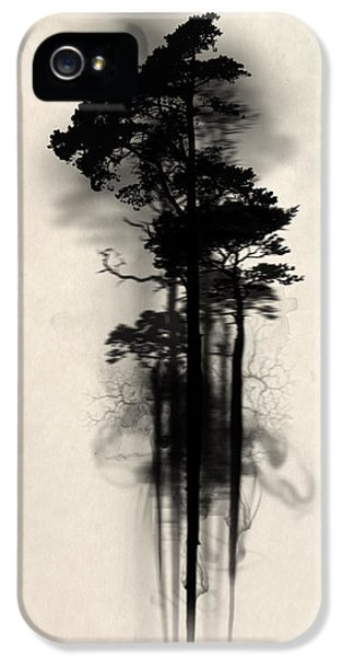 Horror iPhone 5 Cases - Enchanted forest iPhone 5 Case by Nicklas Gustafsson
