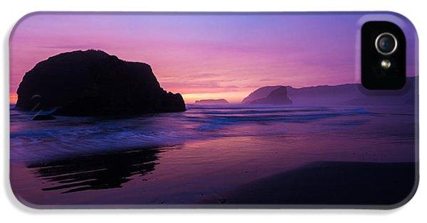 Oregon Coast iPhone 5 Cases - Essence iPhone 5 Case by Chad Dutson