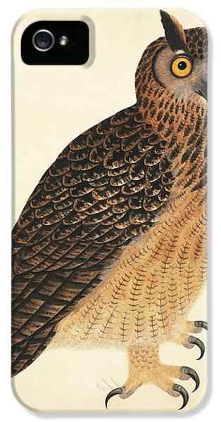 Eurasian Eagle-owl IPhone 5 / 5s Case by Natural History Museum, London