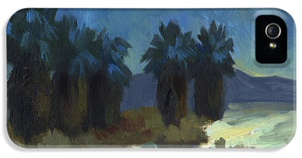 Moonrise iPhone 5 Cases - Evening Solitude iPhone 5 Case by Diane McClary