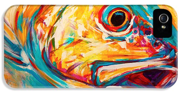 Fly iPhone 5 Cases - Expressionist Redfish iPhone 5 Case by Savlen Art