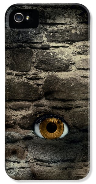 Macabre iPhone 5 Cases - Eye In Brick Wall iPhone 5 Case by Amanda And Christopher Elwell