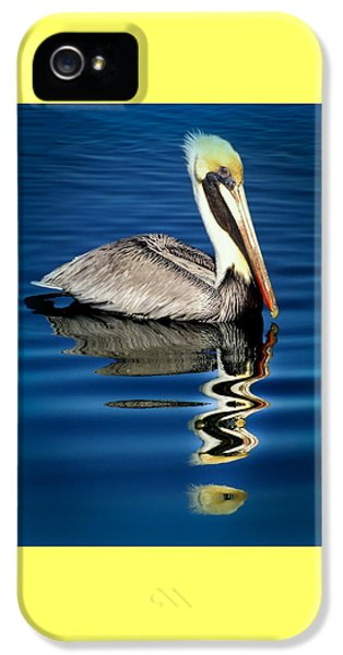 Eye Of Reflection IPhone 5 / 5s Case by Karen Wiles