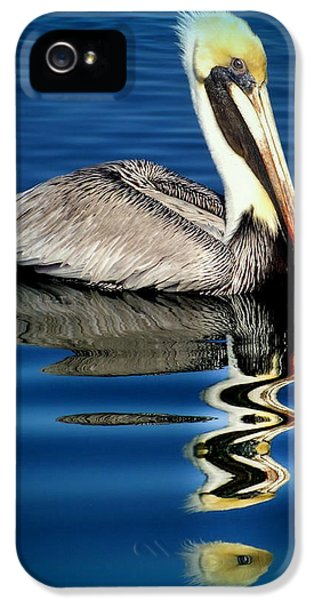 Reflective iPhone 5 Cases - EYE of REFLECTION iPhone 5 Case by Karen Wiles