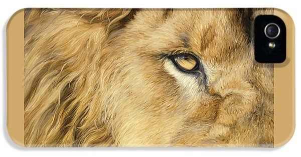 Lion iPhone 5 Cases - Eye Of The Lion iPhone 5 Case by Lucie Bilodeau