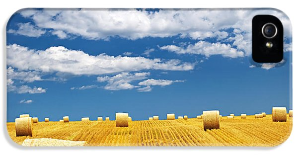 Agriculture iPhone 5 Cases - Farm field with hay bales iPhone 5 Case by Elena Elisseeva
