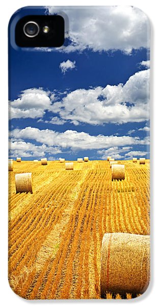 Agriculture iPhone 5 Cases - Farm field with hay bales in Saskatchewan iPhone 5 Case by Elena Elisseeva