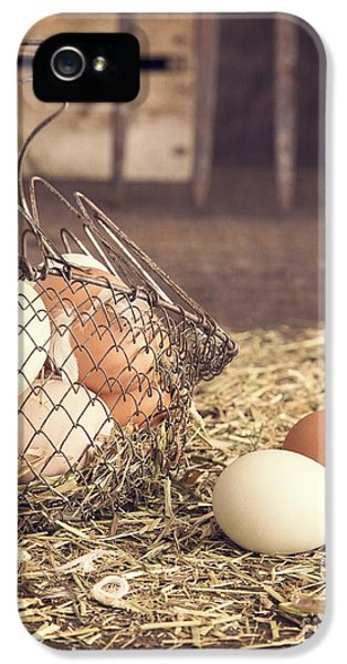 Agricultural iPhone 5 Cases - Farm Fresh Eggs iPhone 5 Case by Edward Fielding