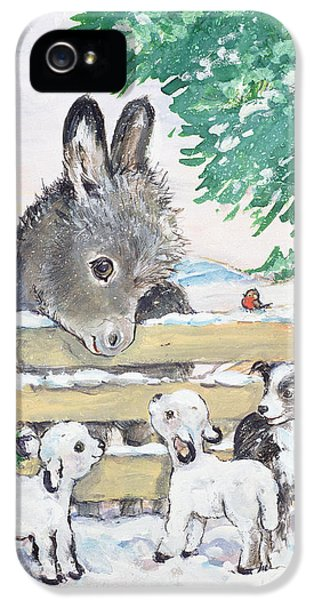 Donkey iPhone 5 Cases - Farmyard Friends, 1996 Wc iPhone 5 Case by Diane Matthes