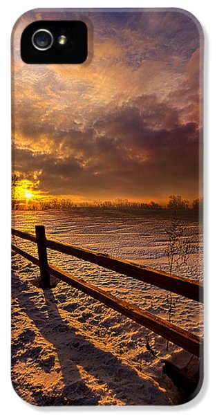 Blue Leaf iPhone 5 Cases - Fence Walking iPhone 5 Case by Phil Koch