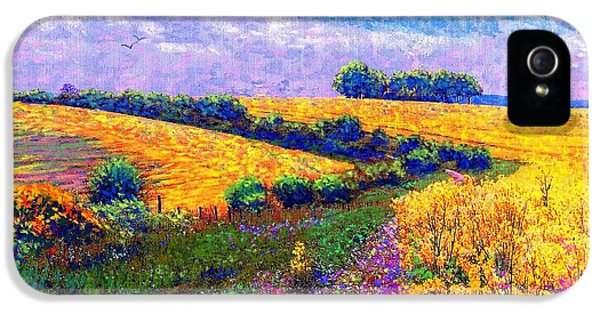 Colourful iPhone 5 Cases - Fields of Gold iPhone 5 Case by Jane Small