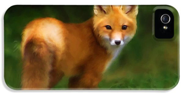 Red Fox iPhone 5 Cases - Fiery Fox iPhone 5 Case by Christina Rollo