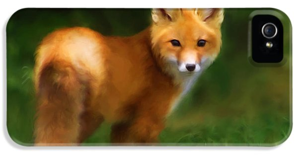 Young Foxes iPhone 5 Cases - Fiery Fox iPhone 5 Case by Christina Rollo