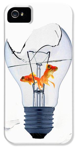Filament (lightbulb) iPhone 5 Cases - Fine Art Untitled No.26 iPhone 5 Case by Caio Caldas