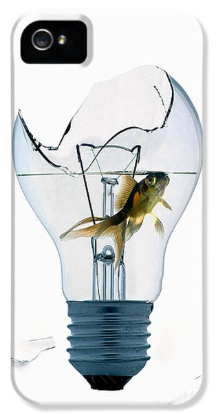 Filament (lightbulb) iPhone 5 Cases - Fine Art Untitled No.28 iPhone 5 Case by Caio Caldas