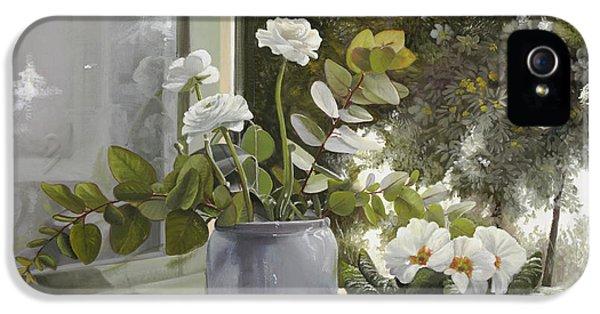 White Flowers iPhone 5 Cases - Fiori Bianchi Alla Finestra iPhone 5 Case by Danka Weitzen