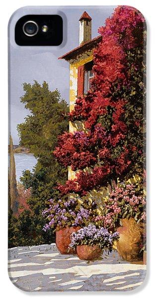 Carnations iPhone 5 Cases - Fiori Rosssi E Muri Gialli iPhone 5 Case by Guido Borelli