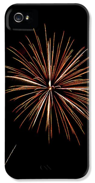 Frieworks iPhone 5 Cases - Fire Works iPhone 5 Case by Gary Langley