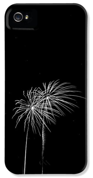 Firework iPhone 5 Cases - Firework Palm Trees iPhone 5 Case by Darryl Dalton