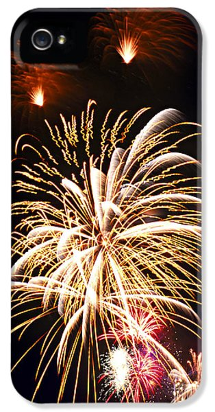 Firework iPhone 5 Cases - Fireworks iPhone 5 Case by Elena Elisseeva