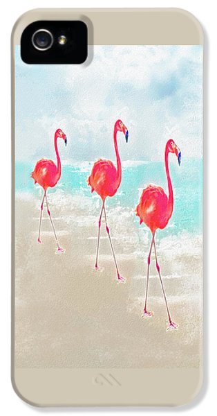 Flamingo iPhone 5 Cases - Flamingos On The Beach iPhone 5 Case by Jane Schnetlage