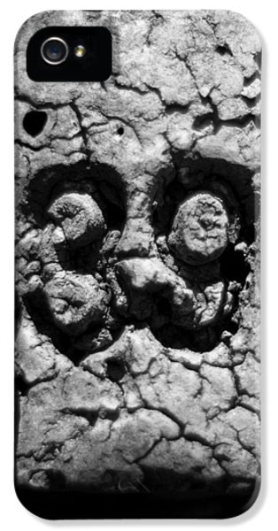 Crabbing iPhone 5 Cases - Float Number 39 - Black and White iPhone 5 Case by Rebecca Sherman