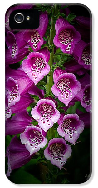 Tubular iPhone 5 Cases - Floral Trumpets iPhone 5 Case by Julie Palencia
