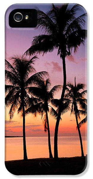 Florida Breeze IPhone 5 / 5s Case by Chad Dutson