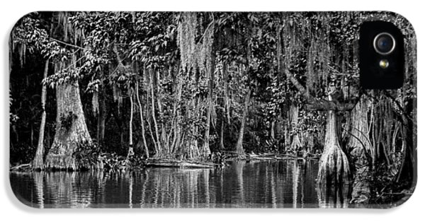 Christopher Holmes Photography iPhone 5 Cases - Florida Naturally 2 - BW iPhone 5 Case by Christopher Holmes