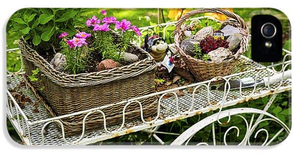 Garden iPhone 5 Cases - Flower cart in garden iPhone 5 Case by Elena Elisseeva