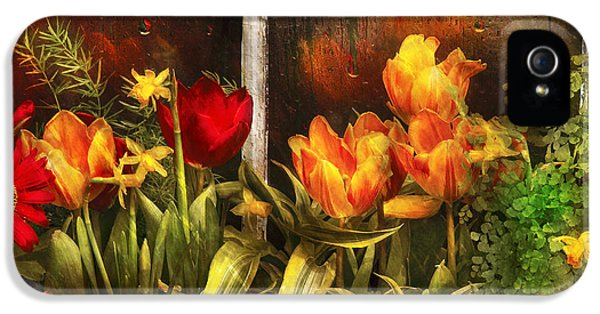 Flower - Tulip - Tulips In A Window IPhone 5 / 5s Case by Mike Savad