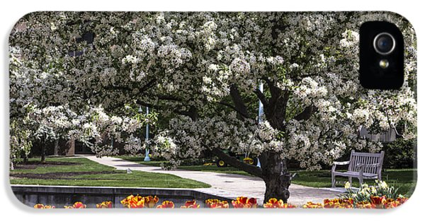 Flowers And Bench At Michigan State University  IPhone 5 / 5s Case by John McGraw